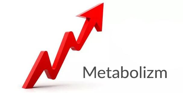 najlepsze efekty dieta online